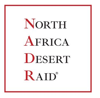 North Africa Desert Raid